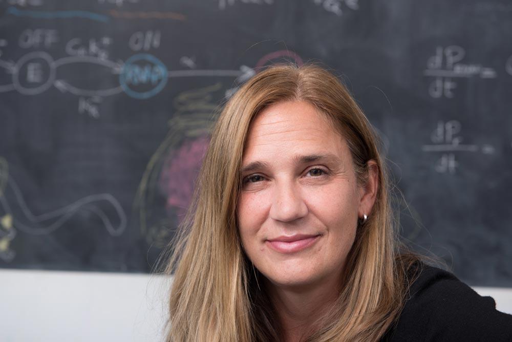 Professor Sylvia Cremer. © IST Austria