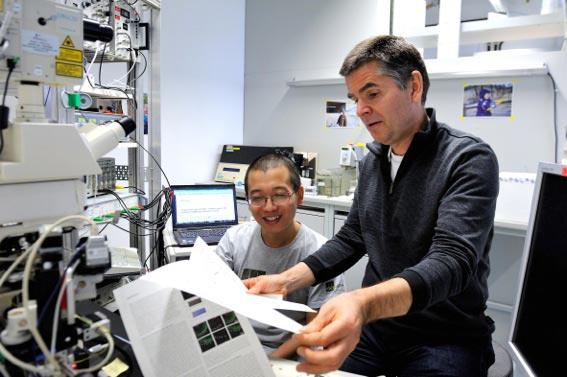 Peter Jonas and Hua Hu in the lab IST Austria