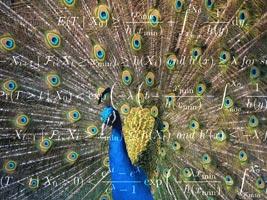SAGE Peacock IST Austria 2014