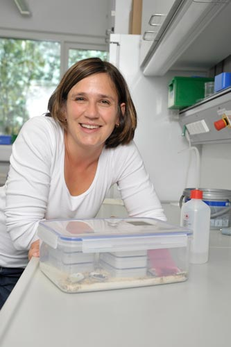 Photo of Sylvia Cremer in her lab at IST Austria