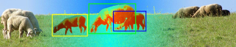 Life-long learning for visual scene understanding IST Austria 2013
