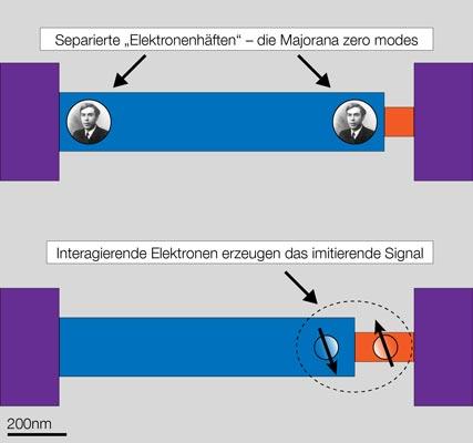 Aufbau des Nanodrahts mit kurzer und langer freiliegender Grenzzone.